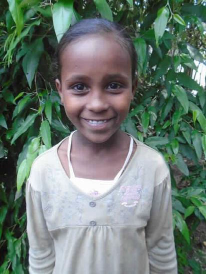 Image of Hamdia