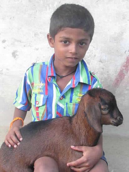 Image of Vetrimaran