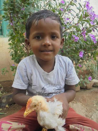 Image of Bhadri