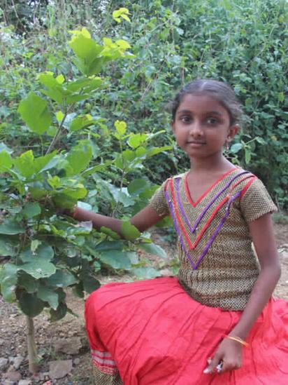 Image of Akshaya