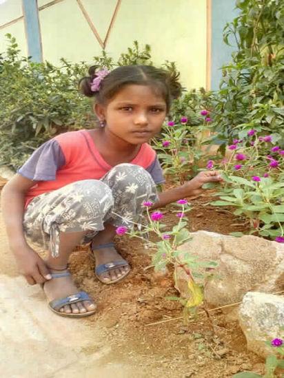 Image of Drakshayani