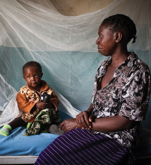 Image of Mosquito nets for a family
